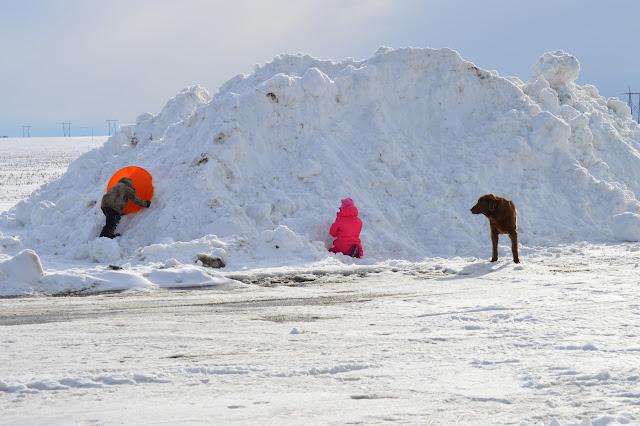 Snow Pile Fun