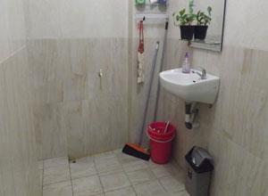 toilet guru