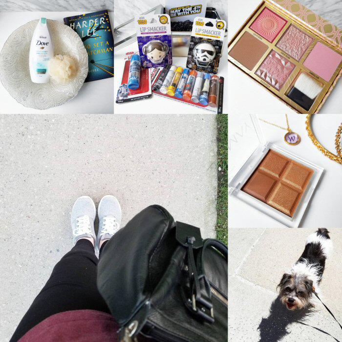 bblogger, bbloggerca, instamonth, instagram, round up, lifestyle, beauty blog, toronto blogger, dove, body wash, sensitive skin, influenster, star wars, tsum tsum, lip smacker, lip smackers, benefit, blush bar, hoola, dandelion, rockateur, gold rush, galifornia, skechers, almay, shadow squad, pure gold baby