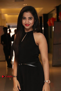 Simba Movie Audio Launch Stills  0004.jpg