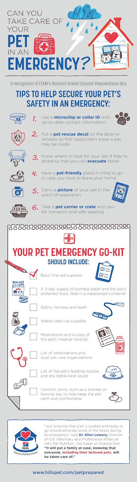 pet care in an emergency