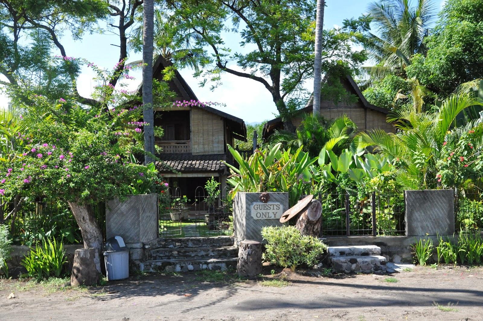 lovina beach houses