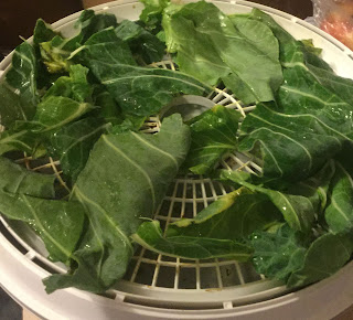 Dehydrating collard greens, how to use dried collard greens, green powder