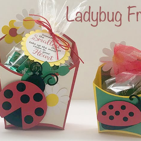 Ladybug Fry Boxes and Tags- Perfect for Spring