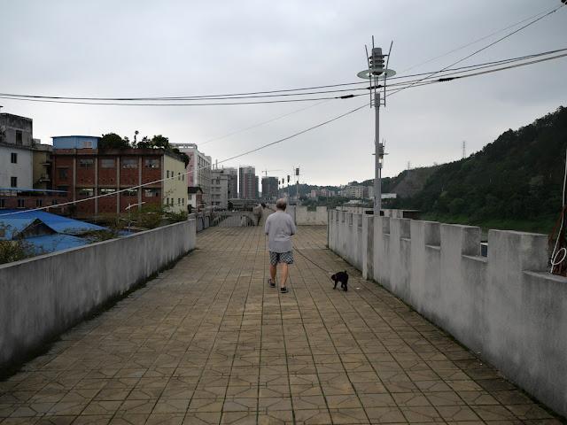 man walking a dog on a wall bordering the Gui River (桂江) in Wuzhou (梧州)