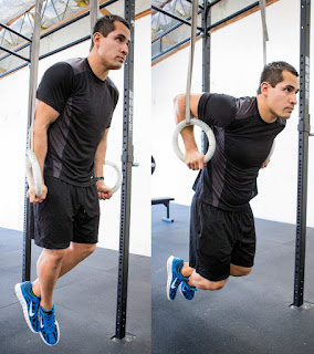 latihan ring dips