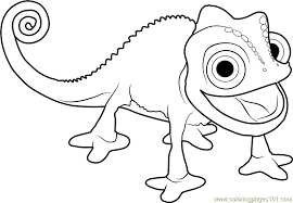 Printable Chameleon Coloring Pages For Kids