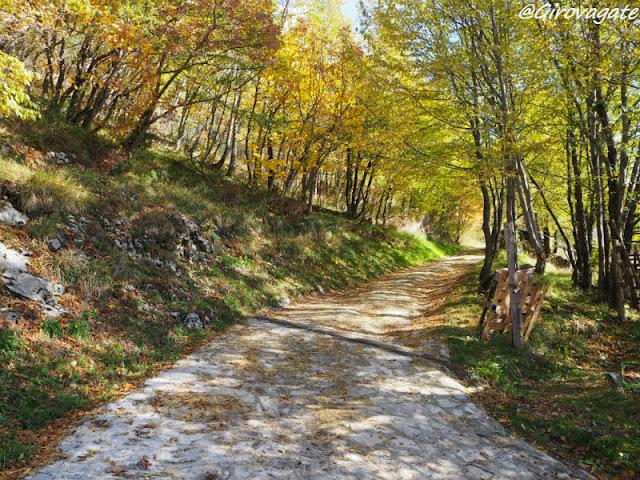 sentiero camosci monti Sibillini