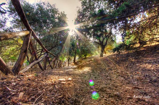 Κοντρα στον ηλιο ,μονοπατι στον Υμμητο ,φωτο Κώστας Λαδάς