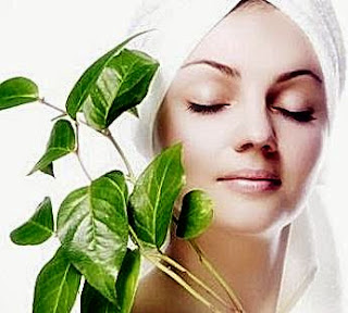 Remove ACNE With Betel Leaf Decoction