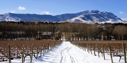 Viñas y nieve_Señorío de Arínzano_Chivite_Rafael Moneo