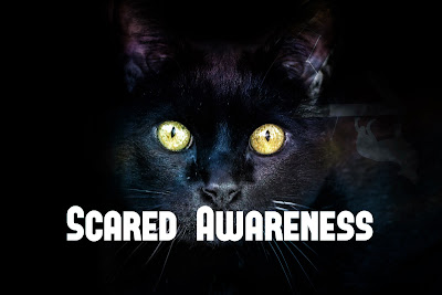 Scared Awareness Psychology