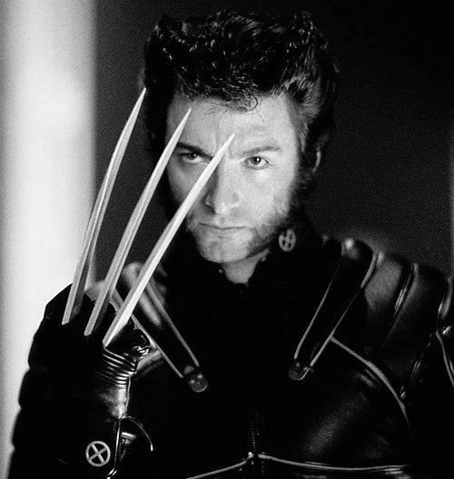 Hugh Jackman Wolverine Hollywood Celebrity Actor High Defination Wallpaper Pics Image