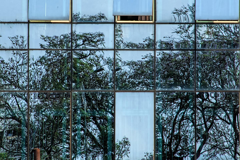 hotel rwanda reflection