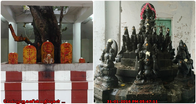Single Stone Navagraha Chennai
