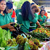 Passi farmers showcase pesticide-free veggies