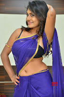 Actress Priya in Blue Saree and Sleevelss Choli at Javed Habib Salon launch ~  Exclusive Galleries 038.jpg