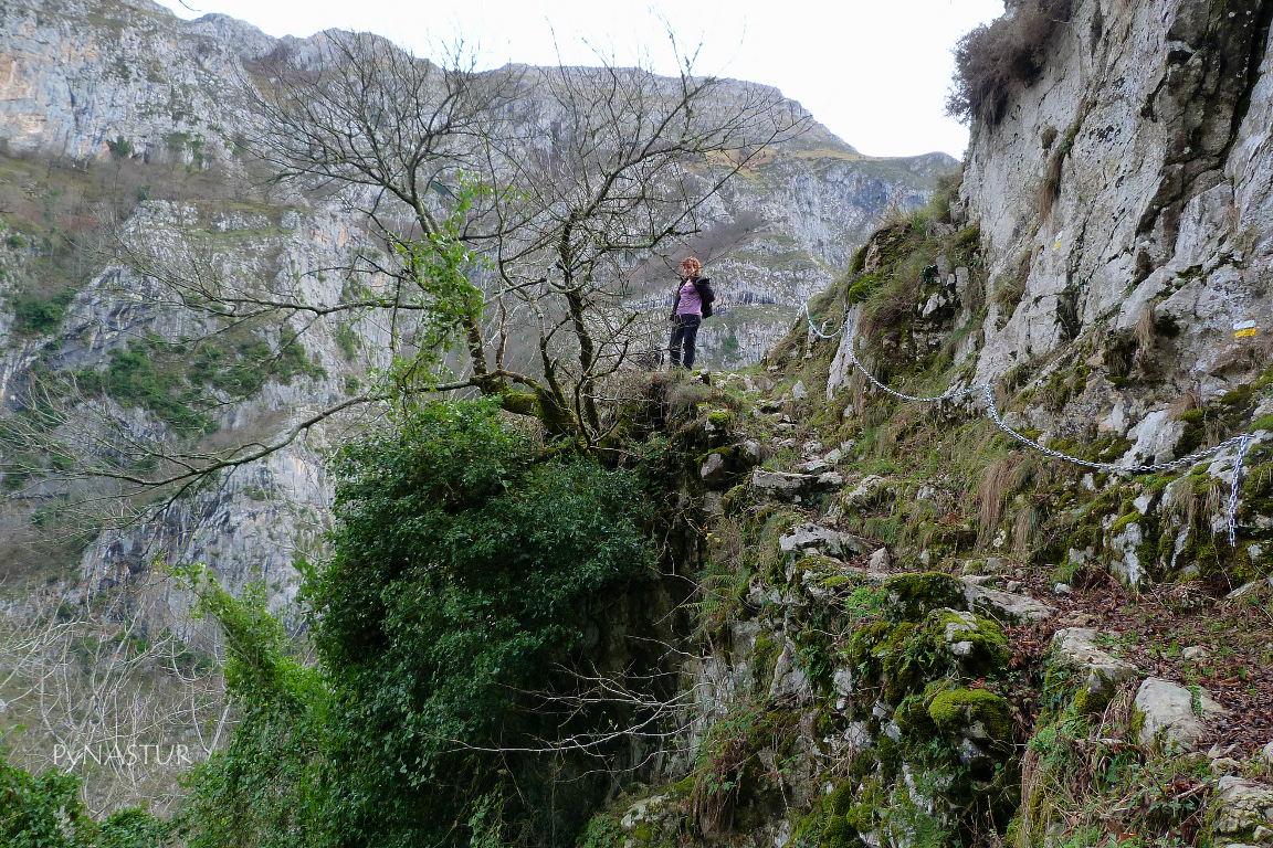 Senda del Cartero - Ponga - Asturias