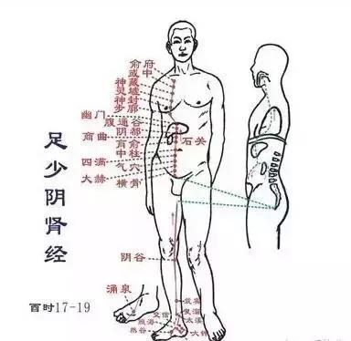 諸病源於堵,這個部位,一定要打通!(肝經、脾經、腎經)
