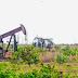 FAZENDA BELÉM. Dois novos poços de petróleo são descobertos no Ceará