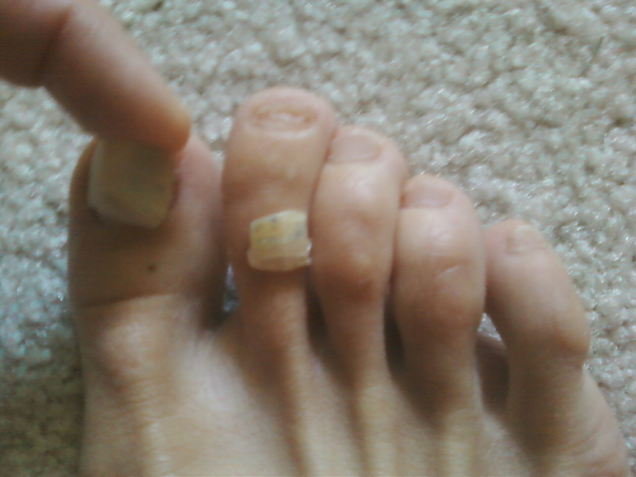 Long Fingernails and Toenails - Bing images