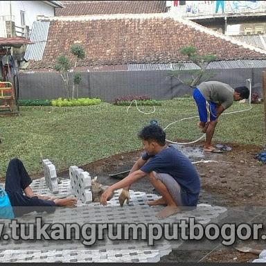 www.tukangrumputbogor.com