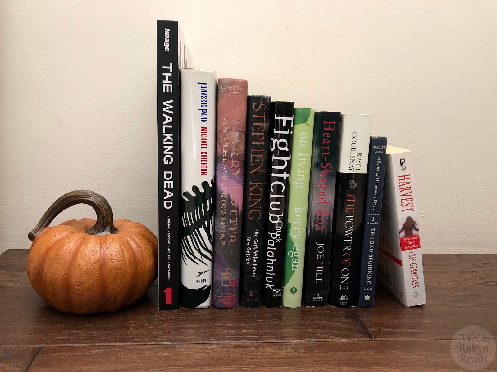 Book Photo Sunday] Books I'm Thankful For - Erica Robyn Reads