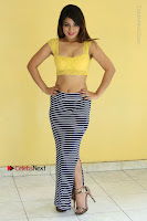Cute Telugu Actress Shunaya Solanki High Definition Spicy Pos in Yellow Top and Skirt  0132.JPG