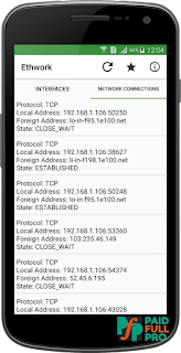 Ethwork Network Interfaces & Netstat Pro APK