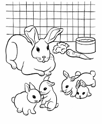 Printable Rabbit Coloring Pages Animals