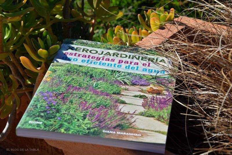 Aspectos importantes relacionados con las estrategias para ahorrar agua en el jardín.
