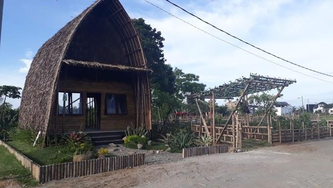 Sun Flower Garden: Destinasi Seru untuk Berfoto di River Valley Residence Medan