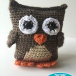 https://www.fairfieldworld.com/project/boxy-owl-crochet-pattern/