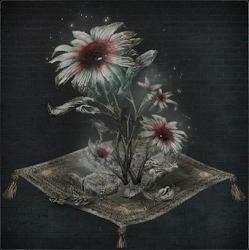 Blooming Coldblood Flower