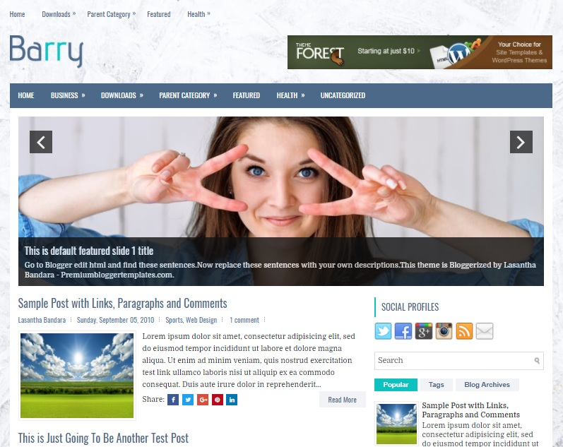 Barry Blogger Template