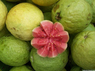 Brazilian guava fruit images wallpaper