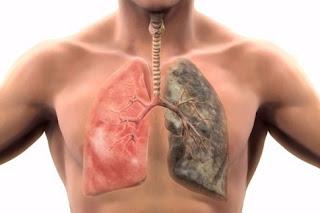 Τσιγάρο και πνεύμονες: Αντέχετε την αλήθεια;