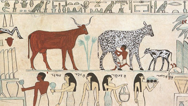 Old Egyptian hieroglyphic painting showing an early instance of a domesticated animal