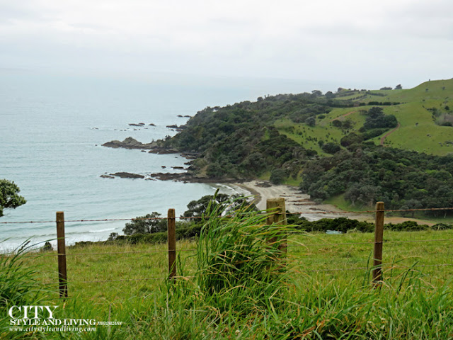 City Style and Living air new zealand waiheke island ocean landscape