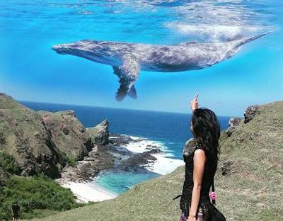 Apa nama aplikasi edit foto yang ada ikan paus di langit di Android di atas cewek
