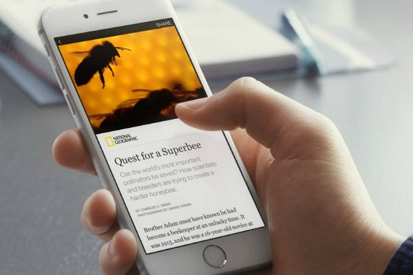 فيسبوك تقرر تعميم الولوج إلى منصتها الجديدة