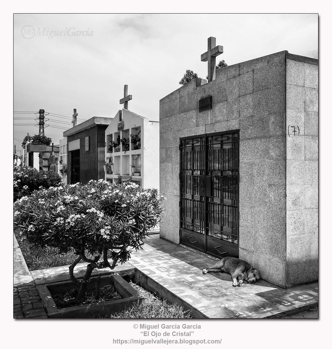 Cementerio de Surco Viejo, Lima (Perú)