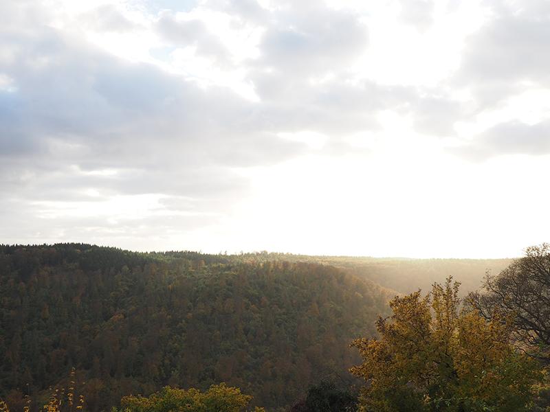 Kyffhäuser, Bad Frankenhausen, fall, autumn, Herbst