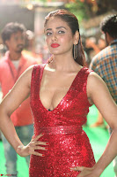 Parul Yadav in Sleeveless Deep Neck Red Gown at IIFA Utsavam Awards March 2017 064.JPG