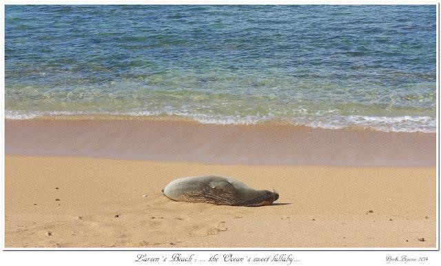 Larsen's Beach: ... the Ocean's sweet lullaby...
