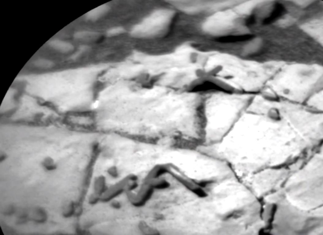 ¿Se han encontrado rastros de fósiles en Marte? Marte%2B2