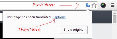 Google chrome translate page