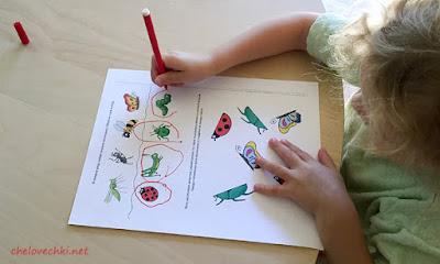 развивающие карточки, карточки насекомые, тема занятия насекомые