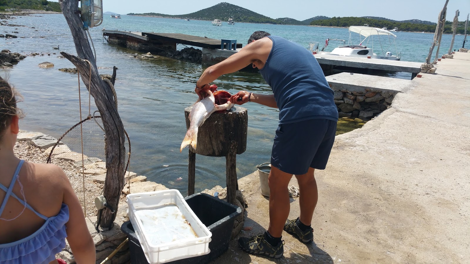 Kroatischer Fischer beim Ausnehmen des Fisches