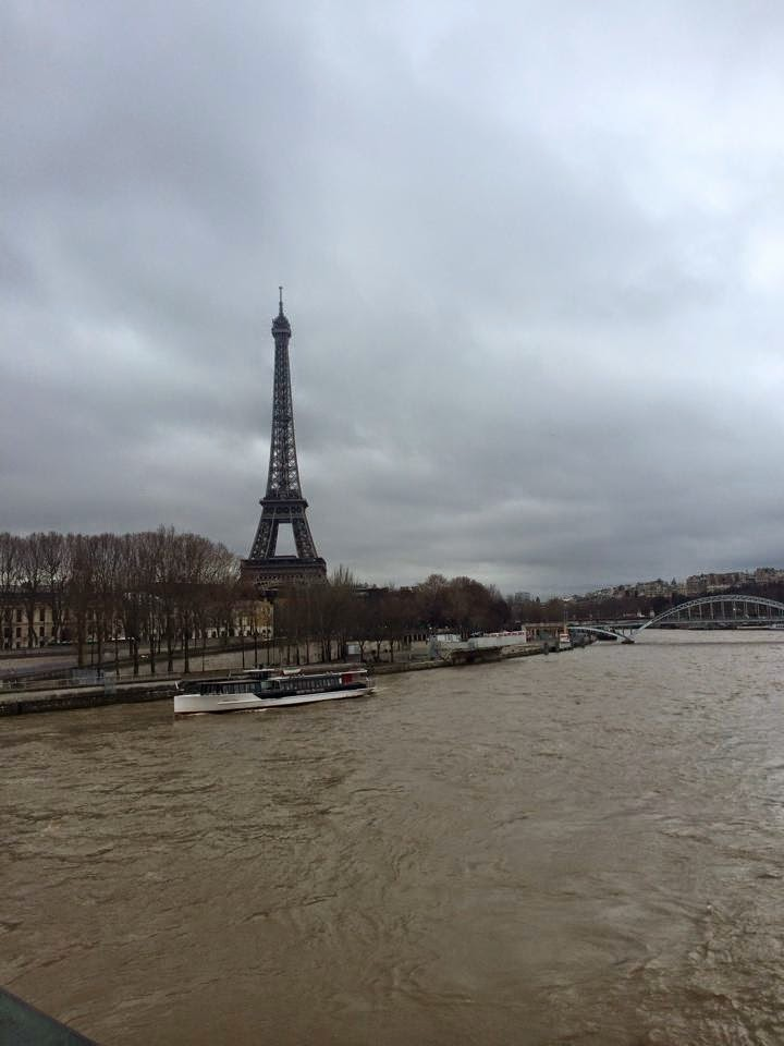 eiffel tower from across the seine river